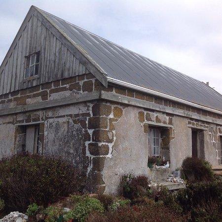 Chatham Island (Rekohu), نيوزيلندا: photo1.jpg