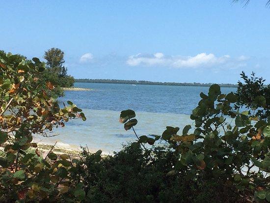Dunedin, FL: Island hopping is the most fun