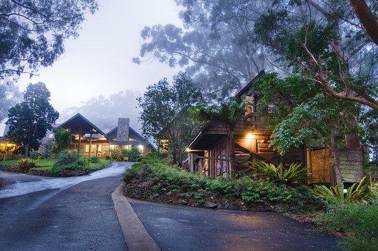 Beechmont, Australia: The main entrance to Binna Burra Lodge with its heritage listed original cabins