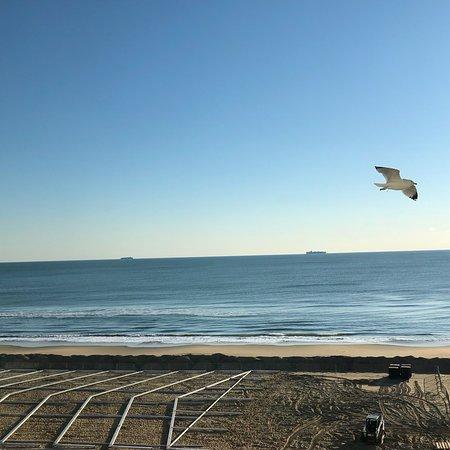 Best Western Plus Virginia Beach : photo2.jpg