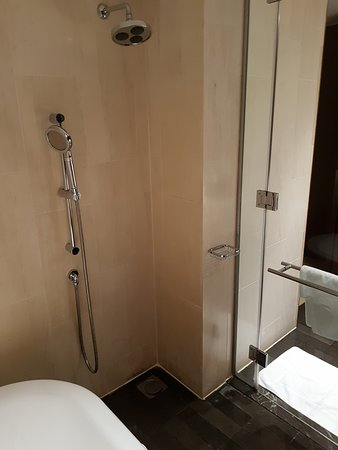 The shower tucked in the corner next to the tub - Picture of ...