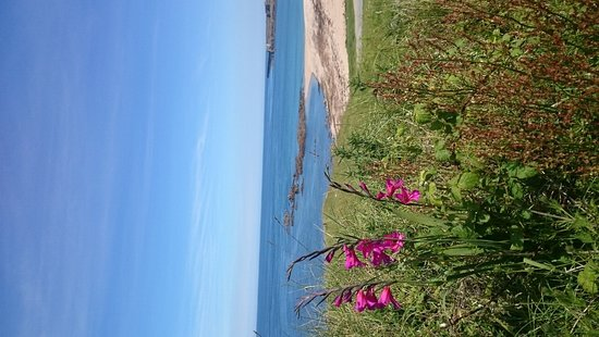 Alderney Tours