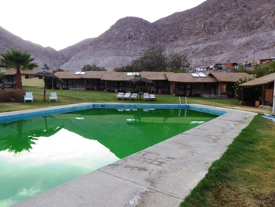 Codpa valley lodge desde arica chile - Algues vertes piscine parois ...