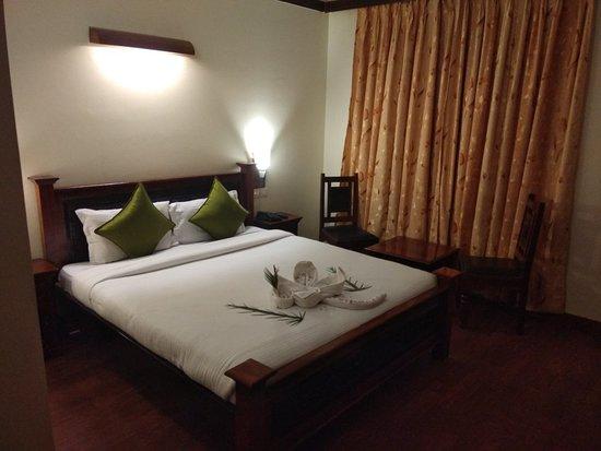 Hotel Ram Vilas: IMG_20180307_200632_large.jpg