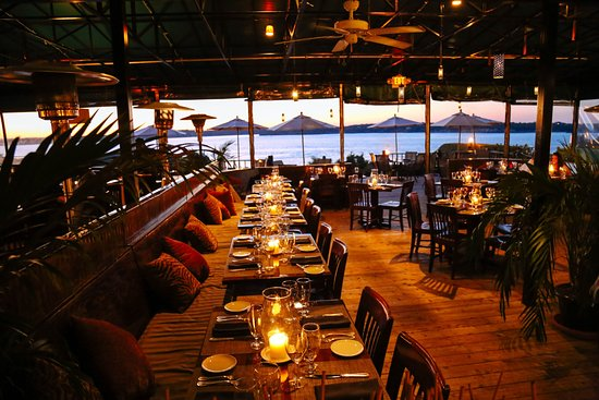 Safari Room At Oceancliff Newport Restaurant Reviews