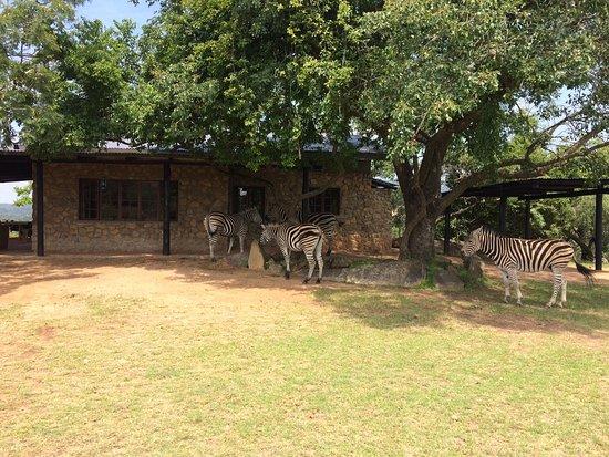 Tomjachu Bush Retreat Photo