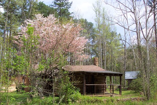 Andersonville, จอร์เจีย: 130+ Log Cabin located in Pioneer Farm
