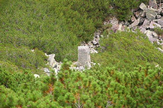 Kamien Karłowicza
