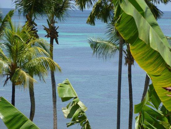 Anse Bois de Rose, Seychelles: Vue de la chambre