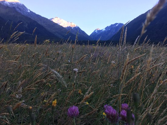 Rangiora, New Zealand: Near Aspiring Hut