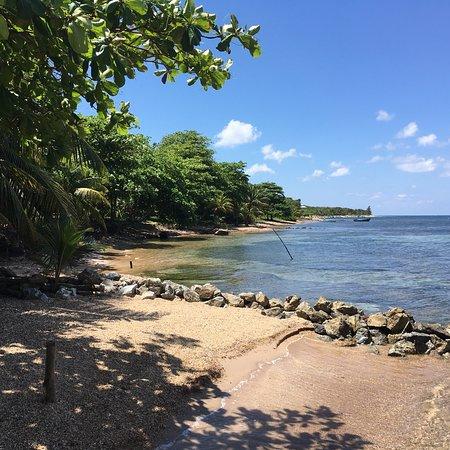 La Sirena de Camp Bay : photo1.jpg