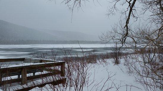 Tully, Estado de Nueva York: view of Labrador Pond from fishing platform