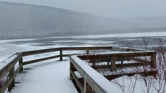 Labrador Hollow Unique Area: view of Labrador Pond from fishing platform