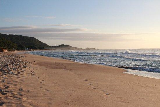 Praia Mole: IMG_1264_large.jpg