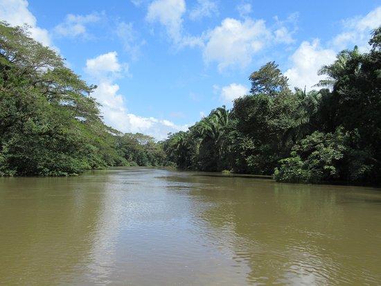 Cano Negro, Kosta Rika: boat trip