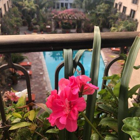 Best Western Plus Sunset Plaza Hotel: photo0.jpg
