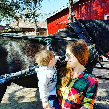 Palmetto Carriage Works: photo1.jpg