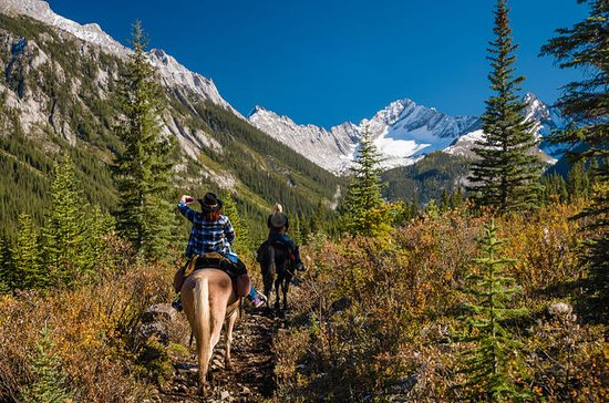 3-Day Sundance Explorer Backcountry ...