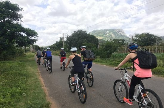 Bangalore's Countryside on a Bicycle