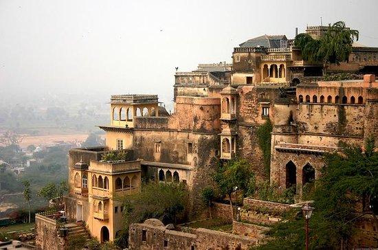 Nemarana Fort Palace, Zip Line, Camel Cart Ride Private Tour
