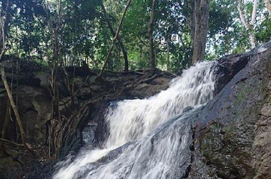 Karura Forest Halbtagesausflug mit...