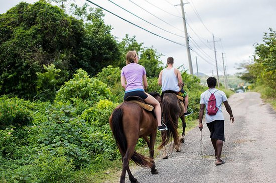 Private Horseback Riding from Ocho ...