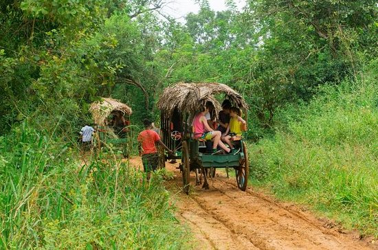 Tour del villaggio privato a Sigiriya