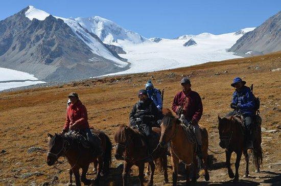 Altai Trek, oeste de Mongolia 10 días