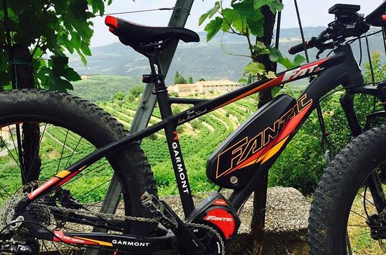 Amarone e- bike tour with lunch
