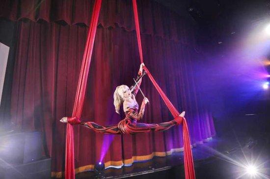 Un espectáculo de Janice Martin Cirque