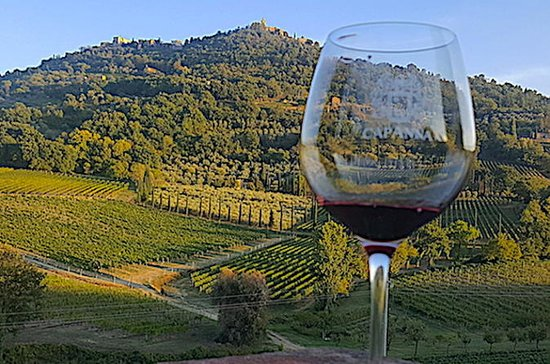 Montepulciano Wine Tour ( 3 wineries...