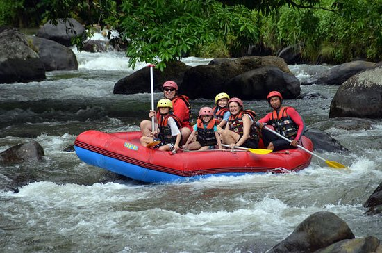 Bali Rafting and Private Combination...