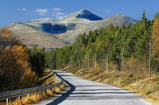 Best Tour Operators In Norway