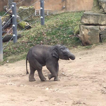 Zoo Praha: photo4.jpg