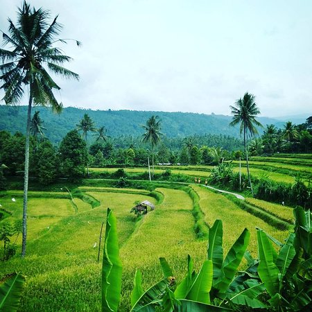Munduk, Indonesia: getlstd_property_photo
