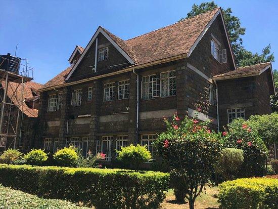 Karunguru Coffee Estate