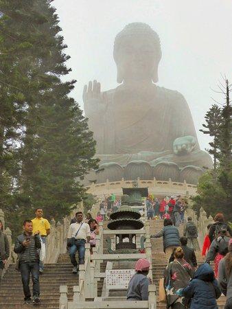 Po Lin (Precious Lotus) Monastery: 250 steps up to Po Lin Monastery