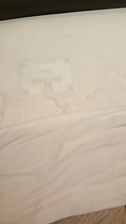 Motel 6 Anaheim Maingate: The sheets are see through. I can see the label!