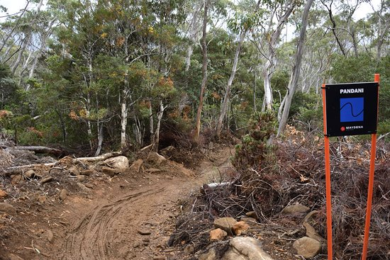 Maydena, Australien: One of the trails from the top