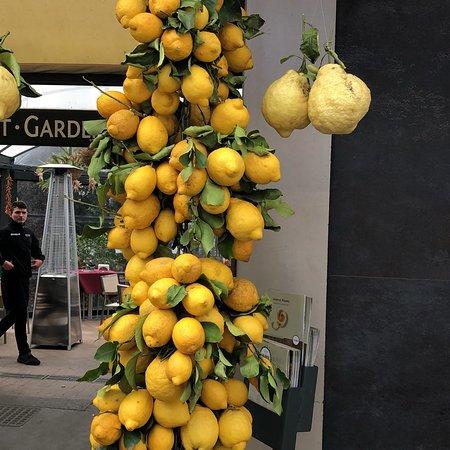 Avventure Bellissime Rome : photo2.jpg