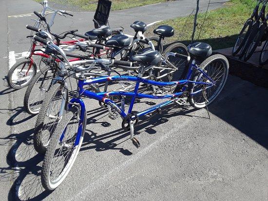 Pahoa, HI: Pedal tandems and recumbent bike