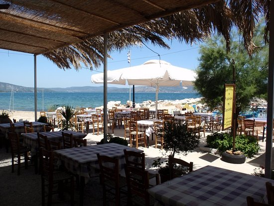 Gera, Yunanistan: Greek traditional food and fresh fish next to the sea.....