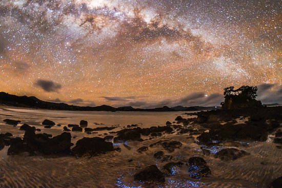 Tryphena, Yeni Zelanda: Milky Way and fosforescence form a startling image (photo: Mark Russell)
