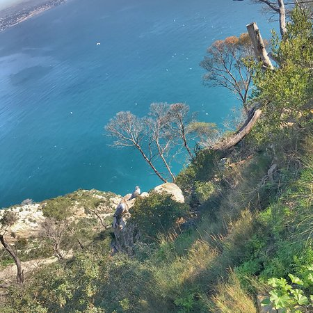 Parque Natural del Peñón de Ifach (Parque Natural de Penyal D'Ifach): photo7.jpg