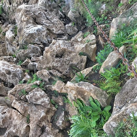 Parque Natural del Peñón de Ifach (Parque Natural de Penyal D'Ifach): photo8.jpg