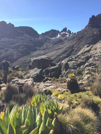 To Mount Kenya Safaris