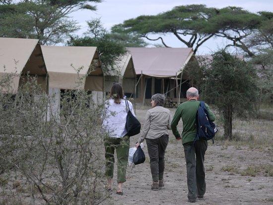 Serengeti Savannah Camps Foto