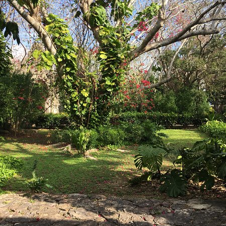 Tixkokob, Mexiko: San Jose is everything and more that the descriptions say it is! The grounds are immaculate and