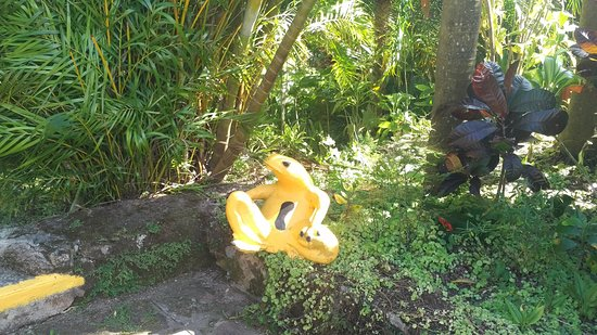 The Golden Frog Inn: Stature of the Golden Frog, a well-known but endangered species found in El Valle