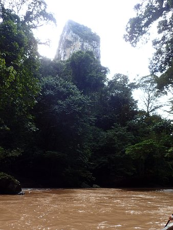 Sepulut, Malaysia: Shit are we going to climb that